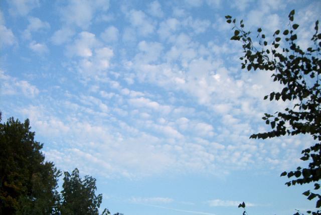 altostratus cumulus - altostratus |Altocumulus Clouds Satellite