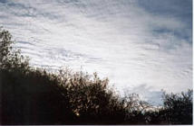 image of cirrostratus clouds in California