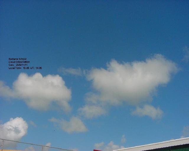 s cool cumulus clouds