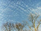 image of cirrocumulus clouds